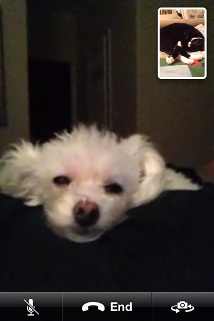 Me and Aunt Belle love to facetime with each other when she is at her house